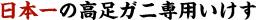 日本一の高足ガニ専用いけす